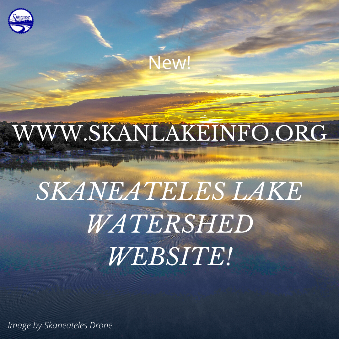 New!  www.skanlakeinfo.org Watershed Website